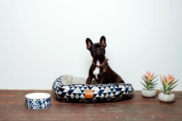 Mog & Bone 4 Seasons Blue Diamond Circular Bed