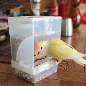 Beweis-Vogel-Gefluegel-Feeder-Automatische-Acryl-Lebensmittelbehaelter-PapagRSDE