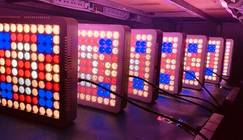 LED PLANT GROW LIGHT 600W BRAND NEW IN BOX