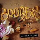 Running in the Flame von Boogers (2015)