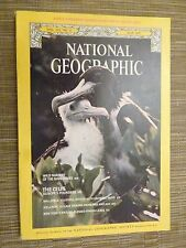 National Geographic- WILD NURSERY OF THE MANGROVES - MAY 1977