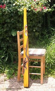 "47 ""\ 120cm Didgeridoo + Sac + D'abeille Embout Buccal Teck Bois Artwork"