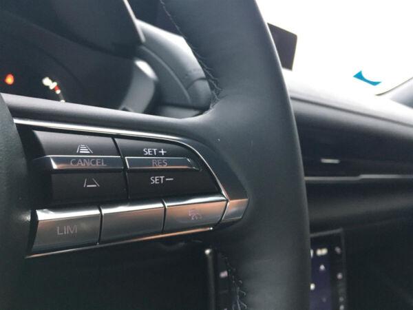 Mazda MX-30  Sky billede 14