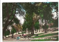 PORCHIANO DEL MONTE  ( Terni )  -  Il bosco