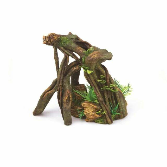 Kazoo Jungle Root With Plants RHS