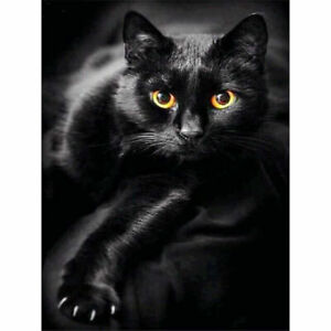 5D-Black-Cat-Full-Drill-Diamond-Painting-Embroidery-Kits-Art-Animal-Decors-Gifts