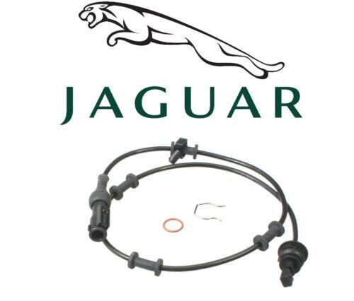 For Jaguar S-Type 2000-2002 ABS Sensor Front Left or Right GENUINE C2S43001