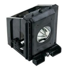 Samsung HLR4266WX/XAA (Type2) HLR5067W (Type2) TV Lamp w/Housing