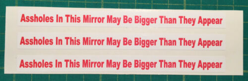 3 Assholes In This Mirror May Be Bigger Than They Appear STICKERS Humorous Funny