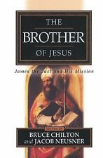 The Brother of Jesus : James the Just and His Mission (2001, Paperback)