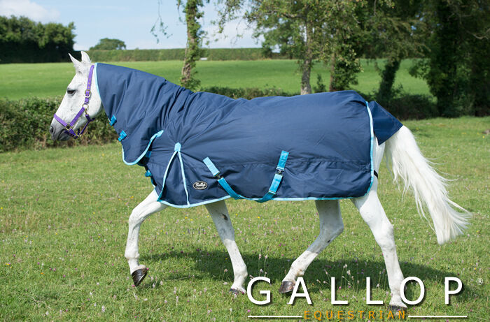 The Montana Trojan Heavyweight Combo Turnout Rug from Gallop Equestrian. 350g