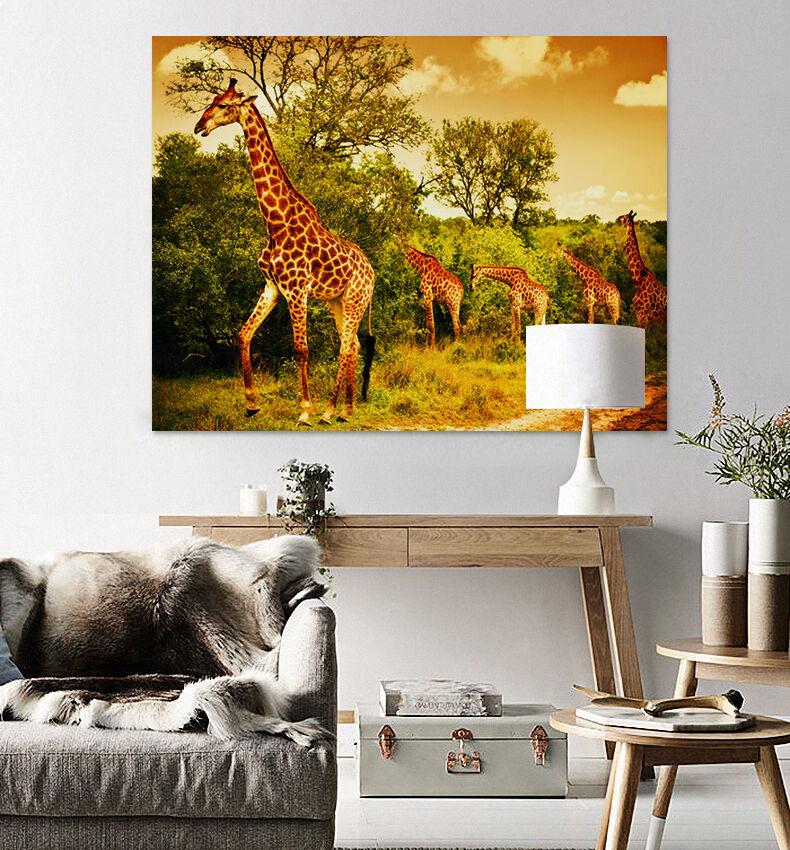 3D Einige Giraffe  Fototapeten Wandbild Fototapete BildTapete Familie AJSTORE DE
