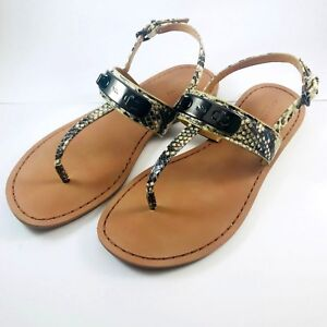 37d4e20abcdaf2 Women s COACH Gracie Snake Skin T Strap Flat Leather Sandals