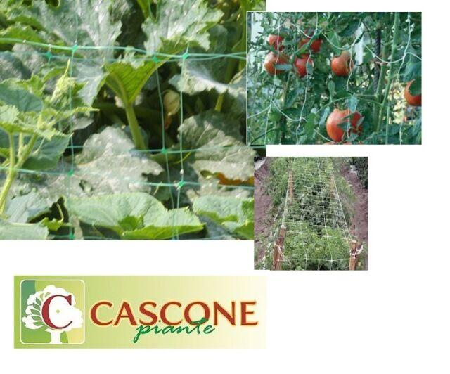 rete supporto sostegno per ortaggi piante rampicanti pomodori