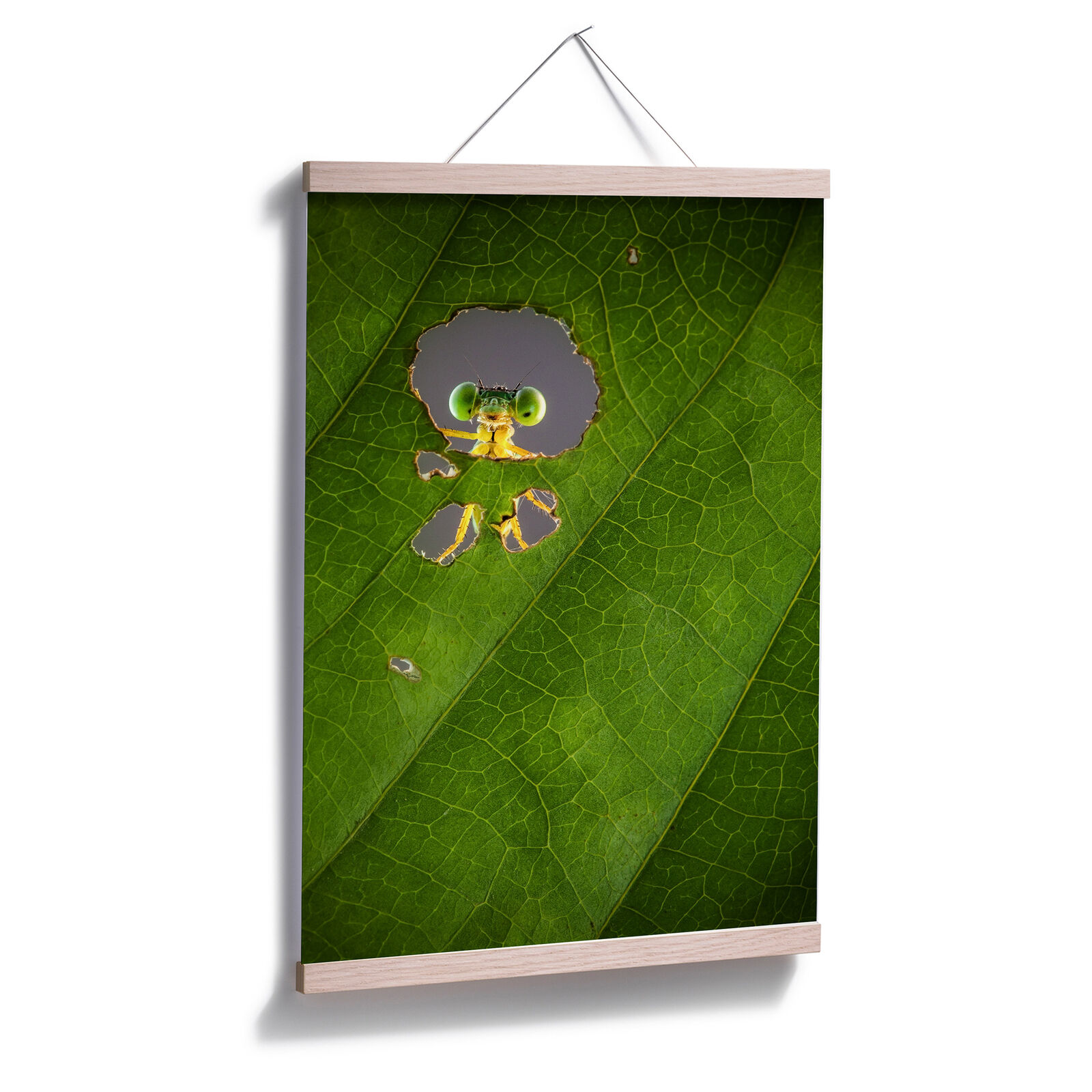 Poster Wilianto - Hello little Friend | | | Elegantes Aussehen