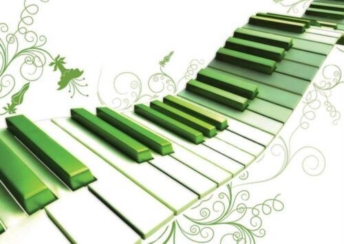 GREEN PIANO KEYBOARD MUSIC KEYS POSTER ART PRINT AMK423