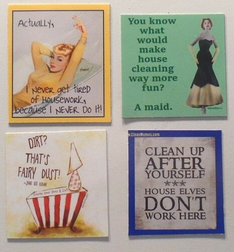 Housework never do it cleaning maid dirt fairy dust house elves don't magnet