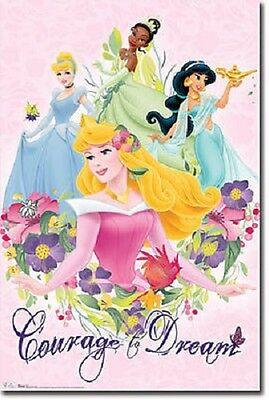 Disney Princess Cinderella Ballroom Beauty Poster Art Print 22x34 T5329
