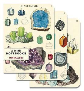 Cavallini-Set-Di-3-Mini-Quaderni-Mineralogy-Foderato-Vuoto-amp-Grafico