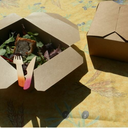 Brown Card Picnic Food Takeaway Boxes Pack of 10