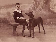 DOBERMAN PINSCHER DOG ADVERT ON GREETINGS NOTE CARD
