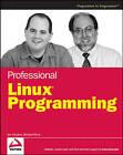 Professional Linux Programming by Jon Masters, Richard Blum (Paperback, 2007)