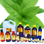 3ml-Essential-Oils-Many-Different-Oils-To-Choose-From-Buy-3-Get-1-Free thumbnail 76
