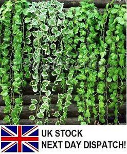 Artificial-Trailing-Ivy-Vine-Leaf-Ferns-Greenery-Garland-Plants-Foliage-Flowers