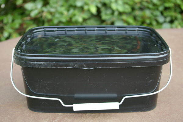 100% Kwaliteit 5x10litre/2 Gallonrectangularplastic Multi Purpose Containers/tubs/buckets+lids.