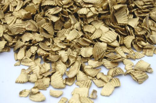 Gold Sea Shells Table Garden Plants Craft Pebbles Nuggets Glass Path Pot Pourri