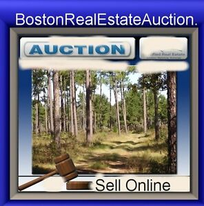 Boston-Real-Estate-Auction-com-World-Can-Buy-Property-Celebrity-Homes-Condos-URL