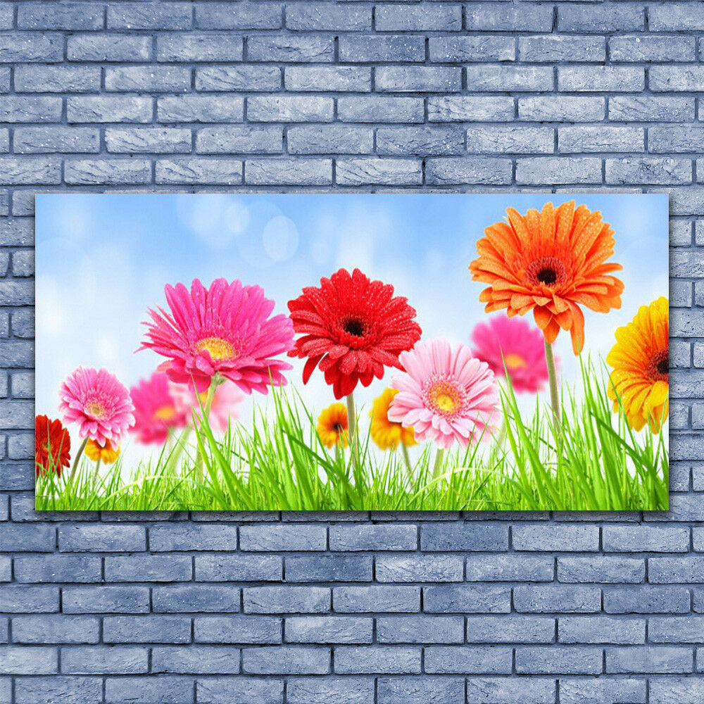 Leinwand-Bilder Wandbild Leinwandbild 140x70 Blaumen Gras Pflanzen