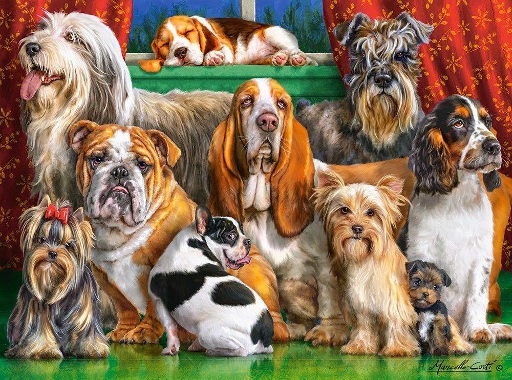 New 3000 pcs pc Puzzle jigsaw Castorland  Dog Club C-300501 FREE SHIPPING