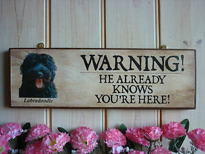 PERSONALISED LABRADOODLE GIFT DOG WARNING SIGN GATE SIGN HOUSE PLAQUE GARDEN PET