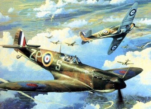 Spitfire Diamante Pintura Kit 40 cm X 30 Cm como punto de cruz