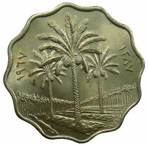 (d19) - Irak Iraq - 10 Fils 1967 - Palme Palm - Unc - Km# 126 Auf Dem Internationalen Markt Hohes Ansehen GenießEn