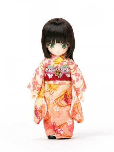 Teddybären OBITSU DOLL 11DL-006 Mion Greenish Brown Limited Costume Set Japan with Tracking