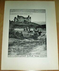 Gollub-Golub-Dobrzy-Ordensschloss-alte-Ansicht-Druck-ca-1920