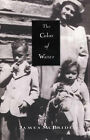The Colour of Water: A Man's Tribute to His Mother by James McBride (Paperback, 1997)