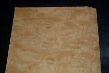 Ash Burl Raw Wood Veneer Sheets 10 X 18 Inches 142nd Ifpa7368 26