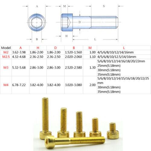 M2 2.5 3 4 Titanium Plating Gold  Allen Screws Cup Head Hexagonal Bolt Screw