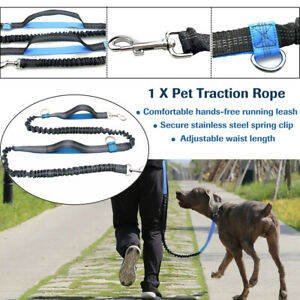 1PC-Pet-Traction-Rope-Reflective-Elastic-Hands-Free-Dogs-Lead-Running-Belt-Leash