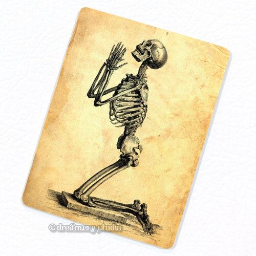 Praying for Immortality Deco Magnet Decorative Fridge Antique Anatomy Medical