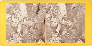 FRANCE-Cuise-la-Motte-Gorge-du-Han-Photo-Stereo-Vintage-Citrate-PL62L11-n5