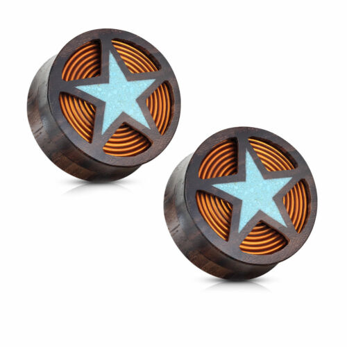 Crushed Turquoise Filled Star with Coil Inside of Organic Wood Plugs Pair