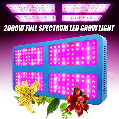 2000w Led Grow Wuchs Pflanzenlampe Vollspektrum Pflanzenlicht Wachstumslampe