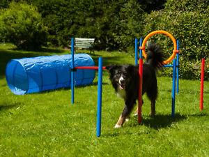 Hunde-Agility-Set-034-K2-034-Profi-Hundesport-Huerde-Slalom-Jump-Ring-wahlweise-Tunnel