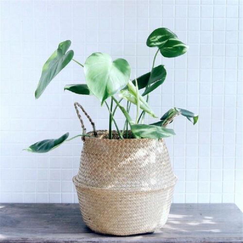 Basket Rattan Folding Wicker Handle Round Natural Sea Grass Plant Storage WoodTD