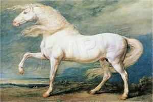 Vintage-VICTORIAN-Gray-WHITE-HORSE-CANVAS-Art-LARGE