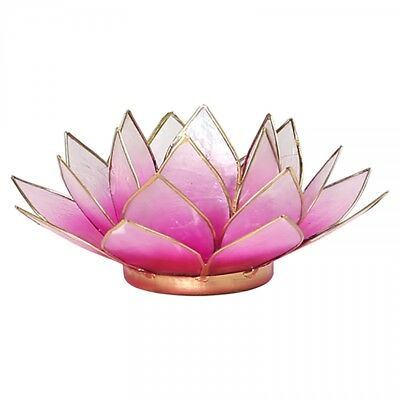 Find Something Different Photophore Lotus en coquille de Capiz Rose et argent